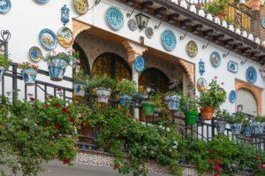 スペイングラナダのお花のある風景