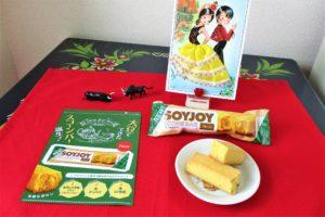 「大塚製薬SOYJOYスコーンバー」サンプル品とパンフレットの写真